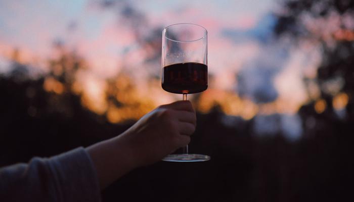 The Economist califica a Chile como «potencia mundial» del vino