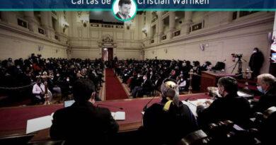 Cristián Warnken: Carta de reflexión a los convencionales constituyentes